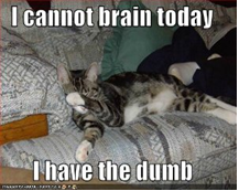brain-meme
