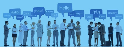Professional language translation service 2